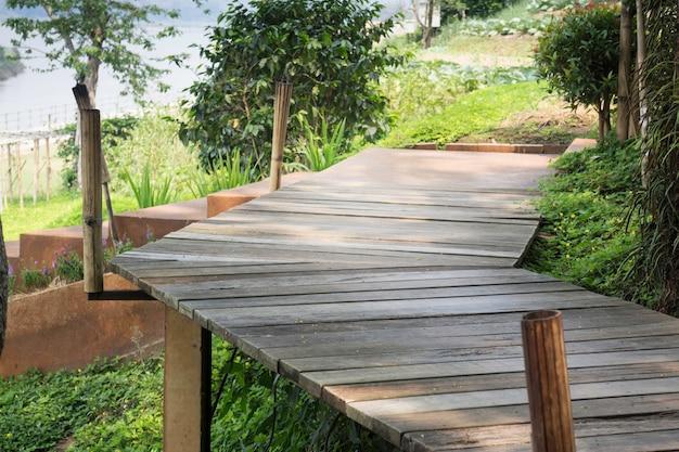 Passerelle en bois avec jardin tropical