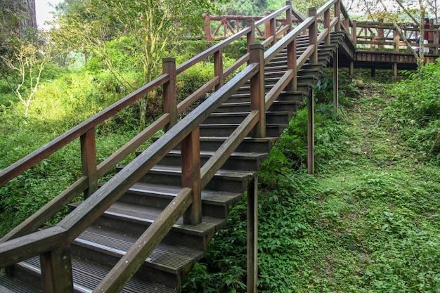 Passerelle de bois à taiwan