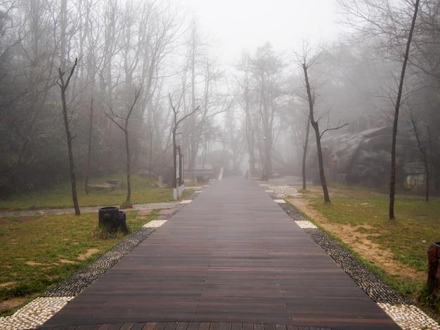 Passerelle dans le brouillard épais et la faible lumière