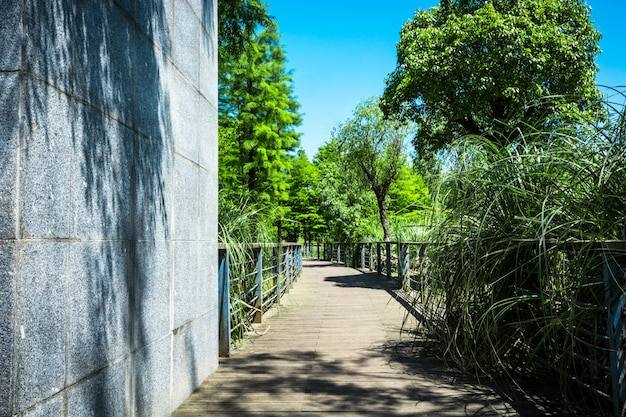 Passerelle dans le jardin à bangkok, thaïlande