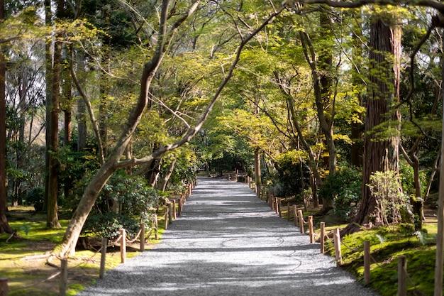 Passerelle dans le jardin et la forêt