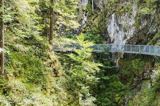 Passerelle par la gorge traversant des vallées vertes sur la rivière