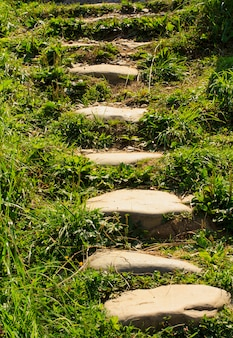 Passerelle en pierre dans le jardin passerelle en pierre méditative.