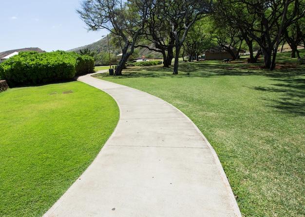 Passerelle piétonne dans le parc