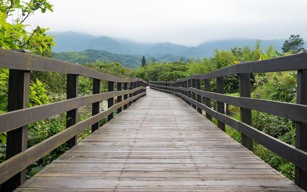 Passerelle de planches de bois en zone humide.