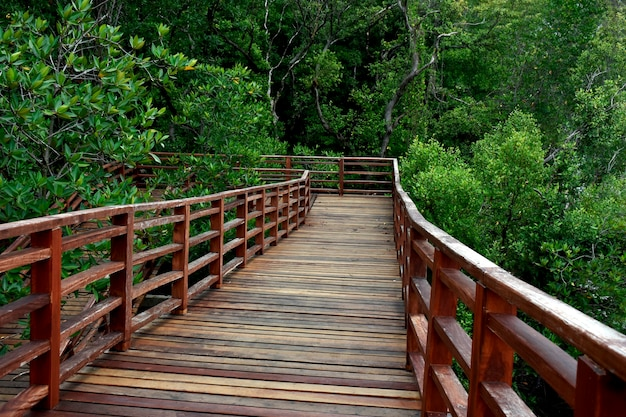 Passerelle de pont en bois