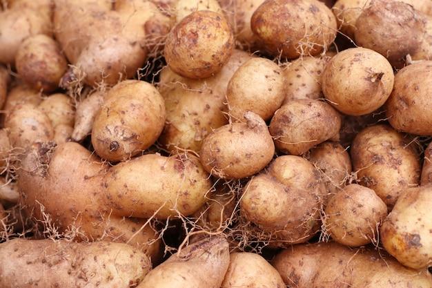 Patates douces au marché