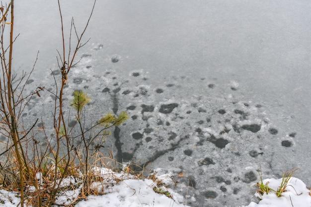 Un patch décongelé sur la rivière de la forêt au printemps.