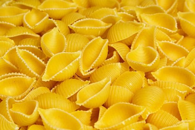 Pâtes italiennes sèches crues crues conchiglioni. coquilles en forme
