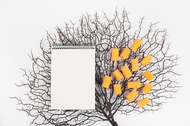 Pâtes penne et un livre de recettes sur un fond décoratif.