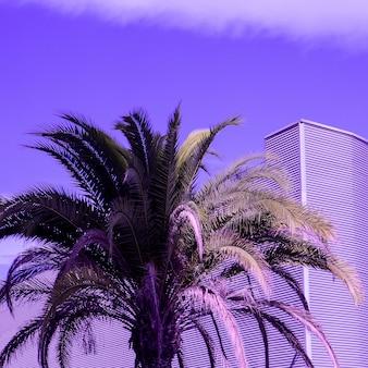 Paume. art créatif minimal violet