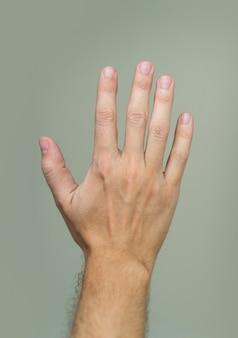 Paume de main masculine