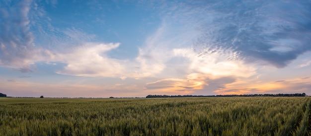 Paysage animé de terres agricoles rurales le soir