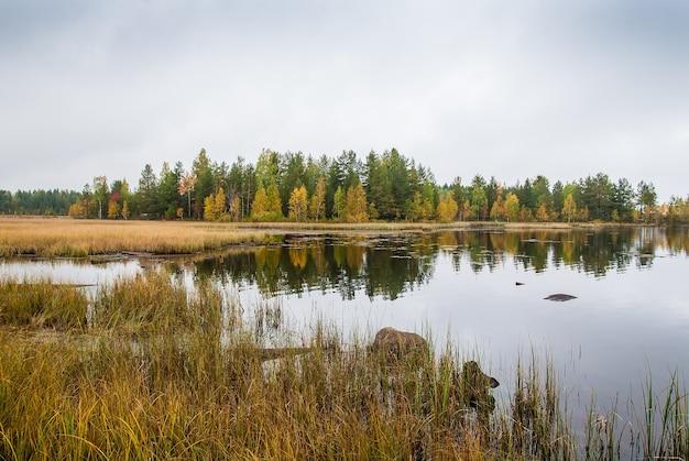 Paysage aquatique d'automne sur le lac ladoga. forêt de couleur d'automne sur la côte du lac