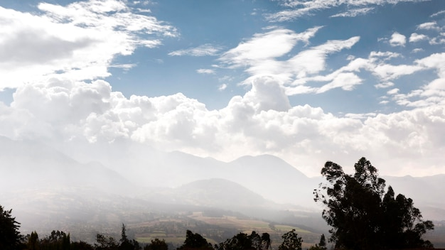 Paysage avec arbres et nuages