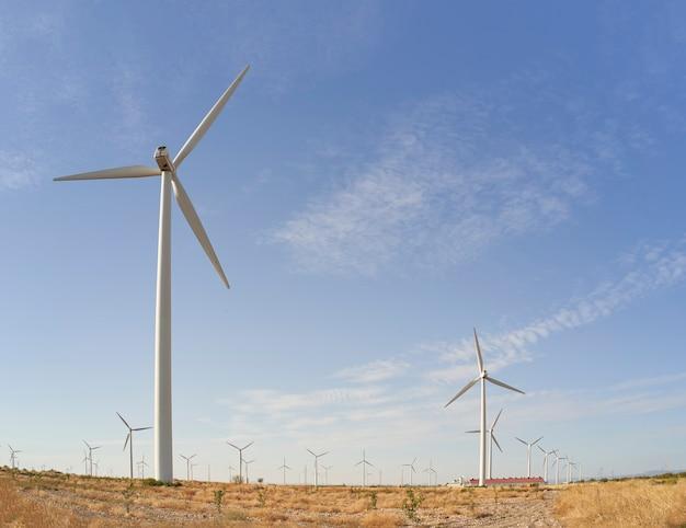Paysage au lever du soleil avec des moulins à vent dans un parc éolien. source d'électricité renouvelable. concept d'énergie et de technologie propres.