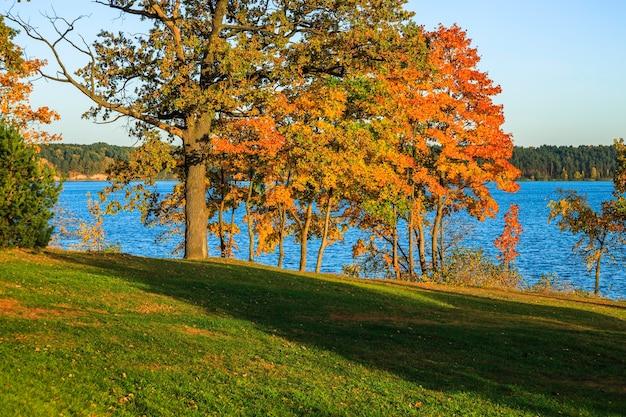 Paysage d'automne avec des arbres colorés autour de l'étang dans un parc de la ville