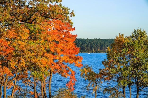 Paysage d'automne avec arbres colorés et voilier