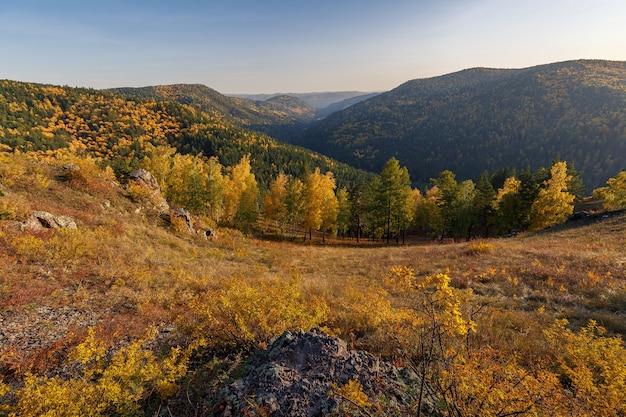 Paysage d'automne aux couleurs dorées au premier plan il y a des arbres de roches avec des feuilles jaunes