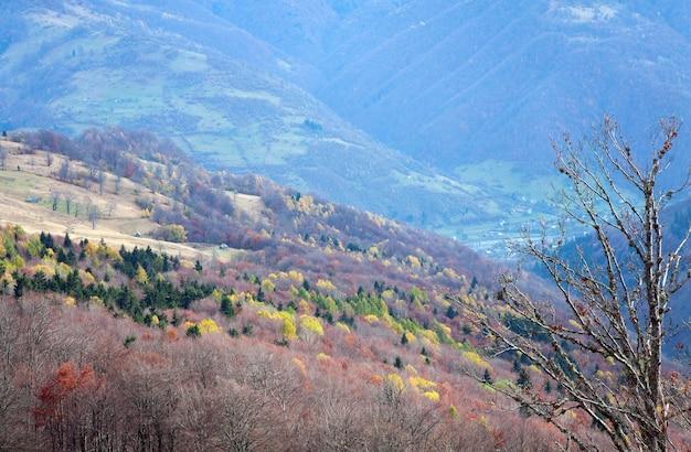 Paysage d'automne des carpates (ukraine)
