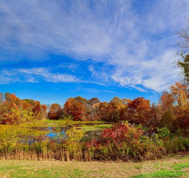 Paysage d'automne coloré dans le village matin dans les carpates, ukraine, europe.