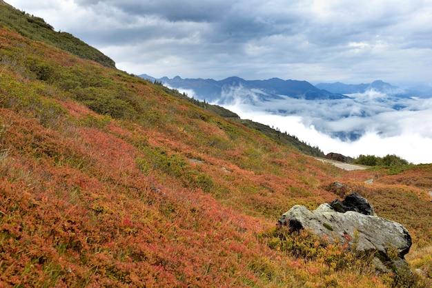 Paysage d'automne dans la montagne des alpes avec buisson rouge et vue sur les nuages dans la vallée- col du petit saint bernard