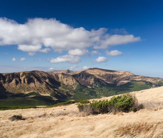 Paysage d'automne ensoleillé dans les montagnes. herbe sèche sur la pente. ciel bleu avec des cumulus. carpates, ukraine, europe