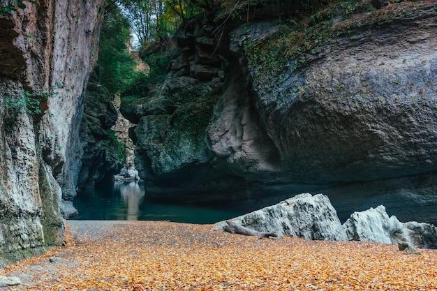 Paysage d'automne rivage sablonneux d'une rivière de montagne parsemée de feuilles jaunes