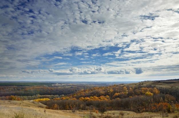 Paysage d'automne. vue sur la forêt au feuillage jaune sur fond de ciel nuageux.
