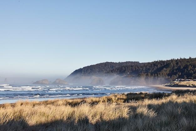 Paysage de beachgrass le matin à cannon beach, oregon