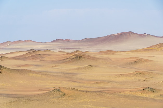 Paysage de belles dunes de sable du désert