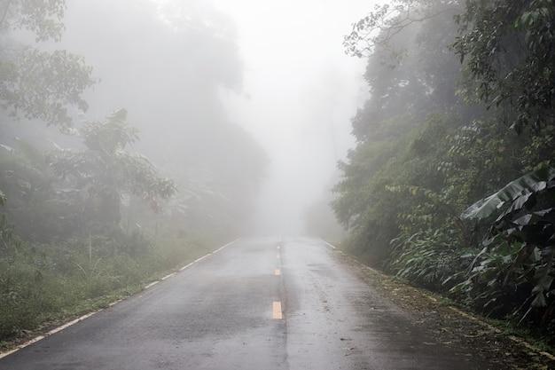 Paysage de brouillard dense sur la route vide et silhouette d'arbre en hiver