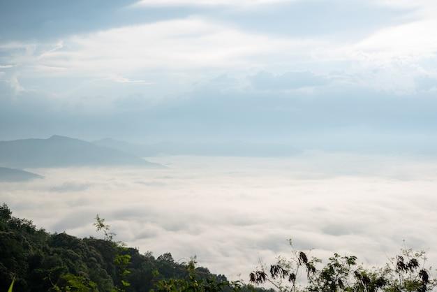 Paysage de brume matinale avec couche de montagne.