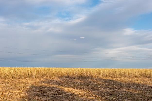 Paysage de campagne d'automne de champ après la récolte sur fond de ciel nuageux