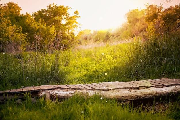 Paysage de campagne d'été avec petite jetée. soleil, arrière-plan flou, bokeh, lumière chaude du soleil, flou artistique. baner nature abstraite