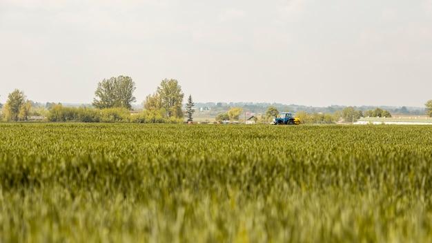 Paysage de champ agricole