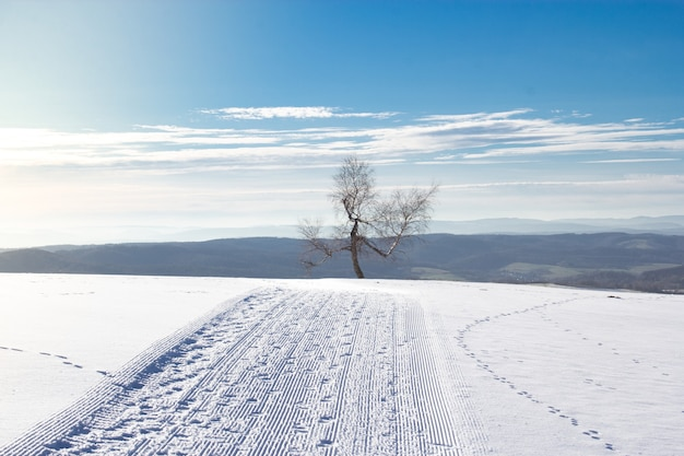 Paysage d'un champ couvert de neige avec des collines sous le soleil