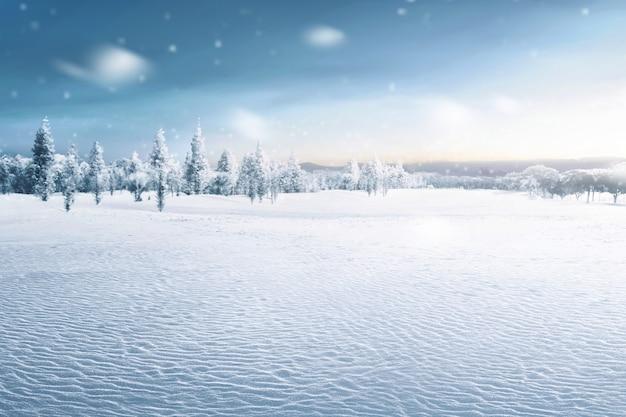Paysage de champ enneigé avec des arbres gelés
