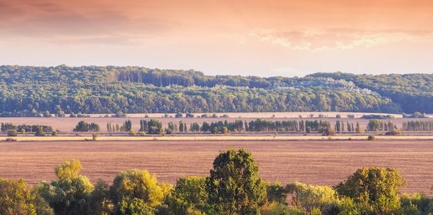 Paysage avec champ labouré et forêt au coucher du soleil