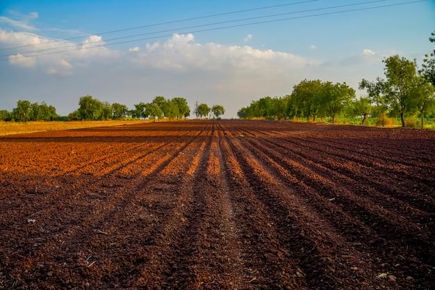 Paysage d'un champ labouré prêt à être semé