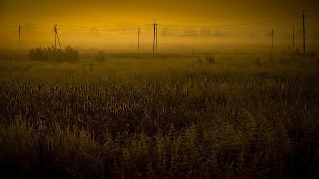 Paysage de champs apocalyptiques