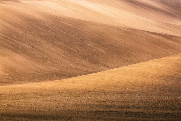 Paysage de champs de moravie en moravie, en république tchèque