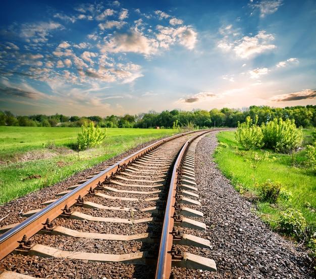 Paysage avec un chemin de fer parmi un champ vert
