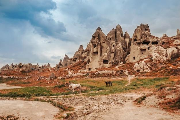 Paysage des cheminées de fées de goreme, cappadoce.