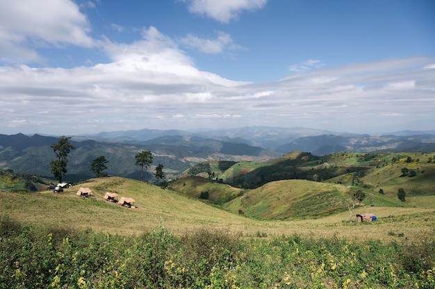 Paysage de colline agricole avec hutte de chaume et ciel bleu dans la campagne à doi mae tho, chiang mai