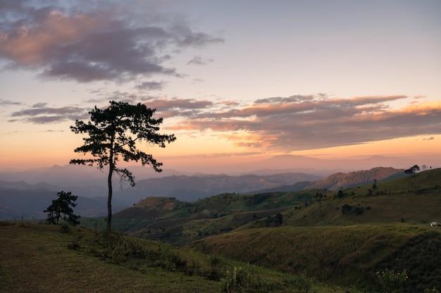 Paysage de colline verte avec ciel coloré dans la soirée au parc national