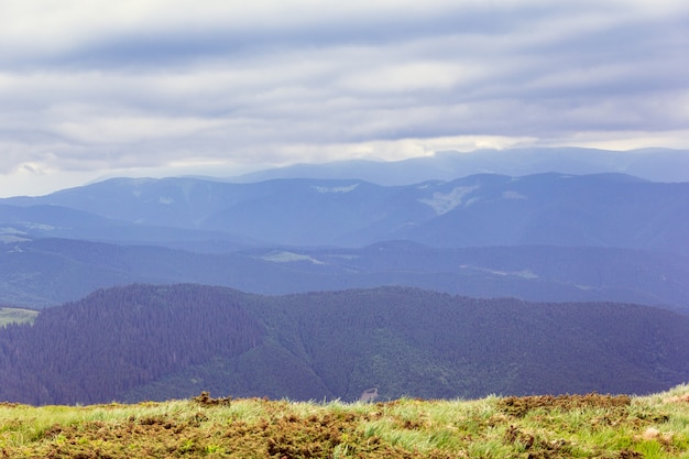 Paysage composé d'une montagne des carpates avec de l'herbe verte