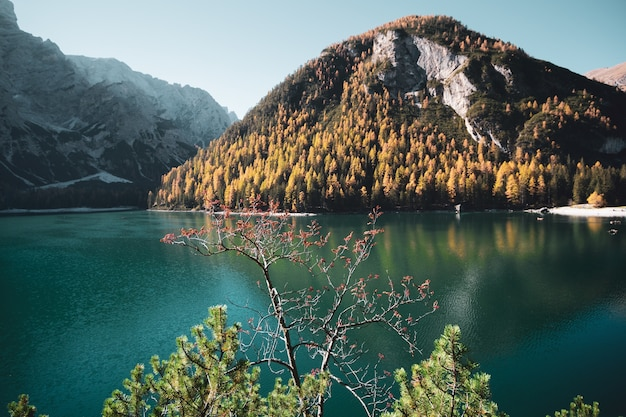 Paysage à couper le souffle du parco naturale di fanes-sennes-braies prags, italie