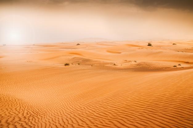 Paysage désertique au ciel bleu. dunes background