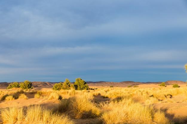 Paysage désertique, maroc
